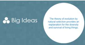 Big_Ideas